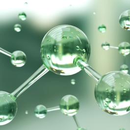 Evaluating the Feasibility of Green Ammonia Production