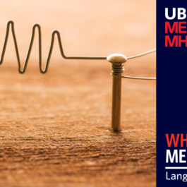 UBC MEL MHLP - Language of Business